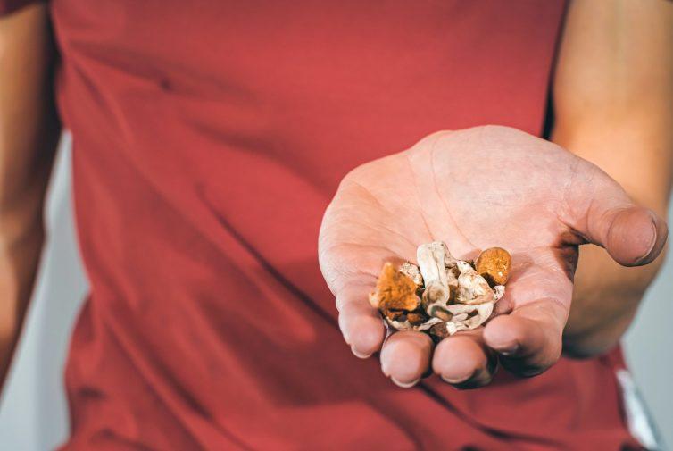 Magic,Mushrooms,For,Microdosing,Being,Held,In,Man,Hands ,Psilocybin